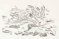 Édouard Manet, Illustration pour L'Après-midi d'un Faune, 1876